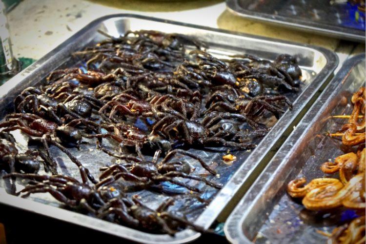 トレーに並べられたカンボジアの珍味 タランチュラ