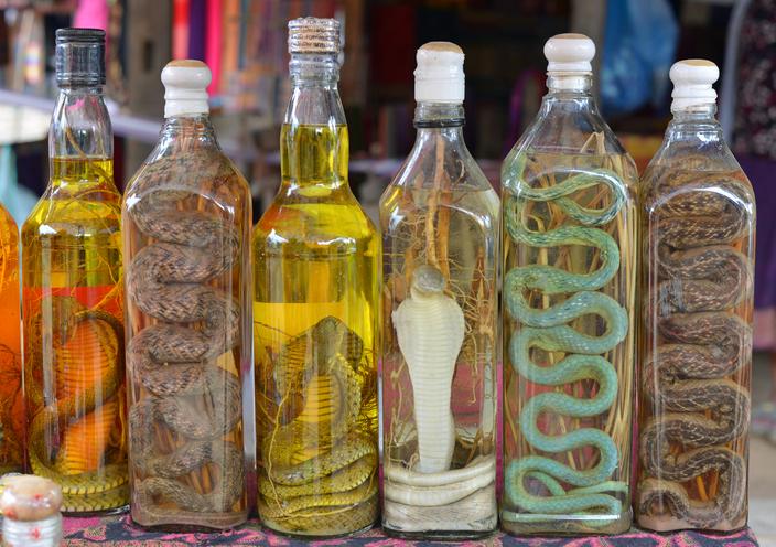 瓶詰めにされた色とりどりのヘビ漬けワイン