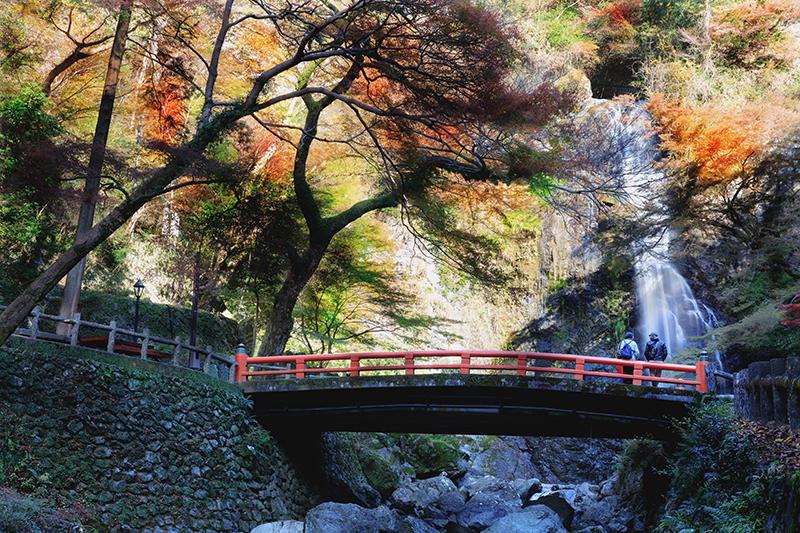 今年おすすめの日本の絶景紅葉名所8選 - 大阪・明治の森箕面国定公園