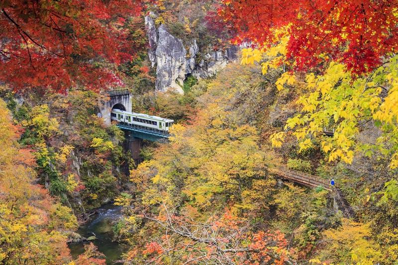 今年おすすめの日本の絶景紅葉名所8選 - 青森県・奥入瀬渓流