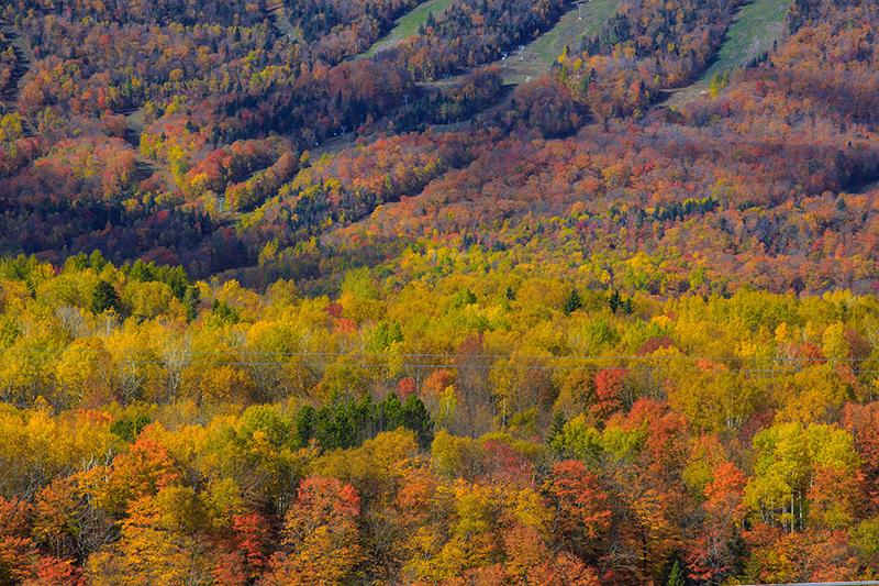 この秋絶対に訪れたい世界の紅葉名所10選 - サンタンヌ渓谷、カナダ・ケベック州