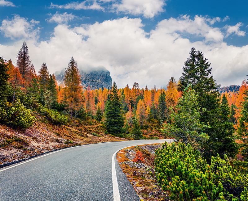 この秋絶対に訪れたい世界の紅葉名所10選 - ボルツァーノ自治県、イタリア