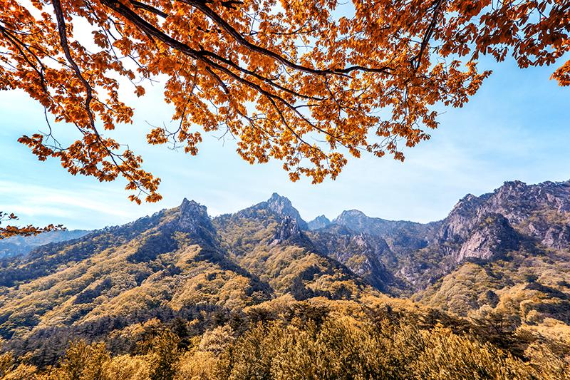 この秋絶対に訪れたい世界の紅葉名所10選 - 雪岳山、韓国
