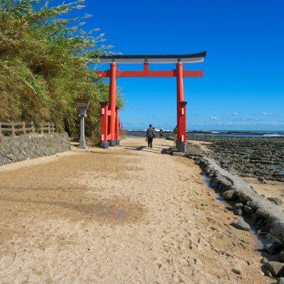 DEST_JAPAN_MIYAZAKI PREFECTURE_MIYAZAKI_AOSHIMA_AOSHIMA SHRINE TORII_shutterstock-premier_514196569_Universal_Within usage period_32155
