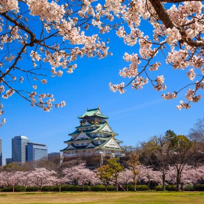 DEST_JAPAN_OSAKA_CASTLE_THEME_SPRING_CHERRY-BLOSSOMS_GettyImages-474272268_Universal_Within usage period_27390
