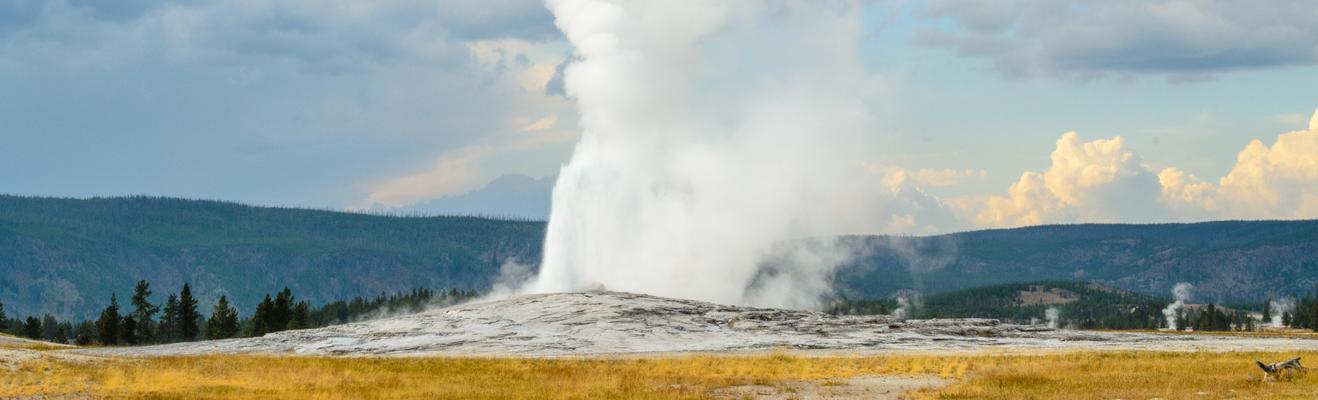 Yellowstone National Park - エコ
