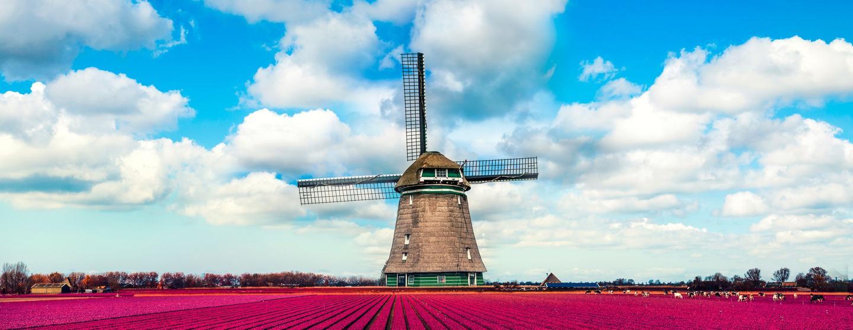 オランダのレンタカー