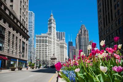 シカゴのホテル