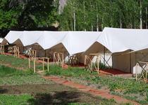 ホテル ミスティック メドーズ キャンプ