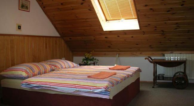 Pension Edvin - プラハ - 寝室