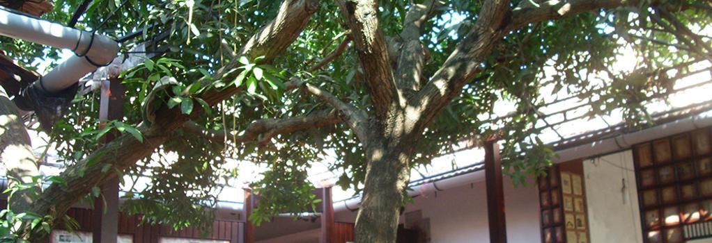 The Mango Tree Inn - コチ - レストラン