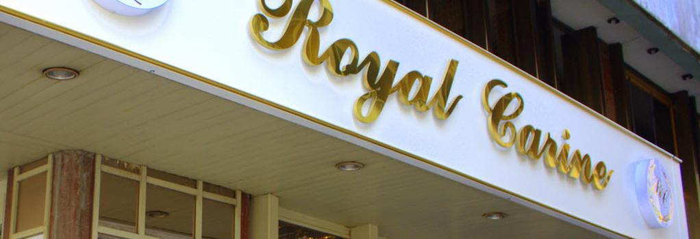 Royal Carine Hotel - アンカラ - 建物