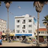 ヴェネツィア ビーチ スイーツ & ホテル Venice Beach Suites & Hotel viewed from the sand