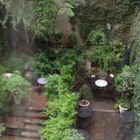 チェルシー パインズ イン Garden