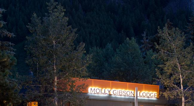 Molly Gibson Lodge - アスペン - 建物