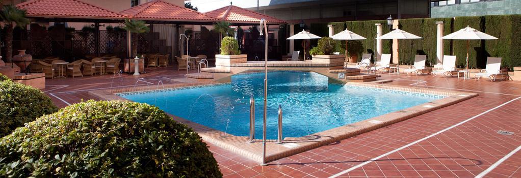 ホテル サライ - グラナダ - プール