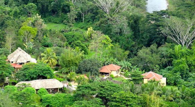 Sleeping Giant Rainforest Lodge - Belmopan - 屋外の景色