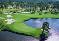 Island Vista Resort - マートル・ビーチ - ゴルフコース