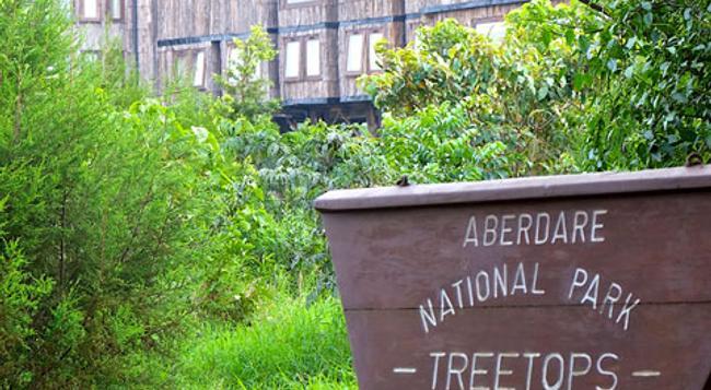 Treetops - Nyeri - 建物