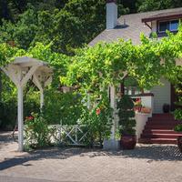 カリストガ ワイン ウェイ イン Property Grounds