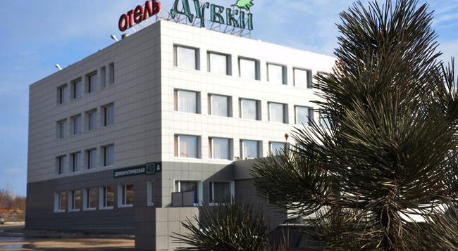 Dubki Hotel - サマーラ - 建物