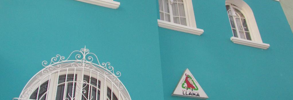 Red Llama Eco Hostel - リマ - 建物