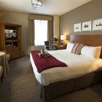 エグゼクティブ ホテル パシフィック Guestroom